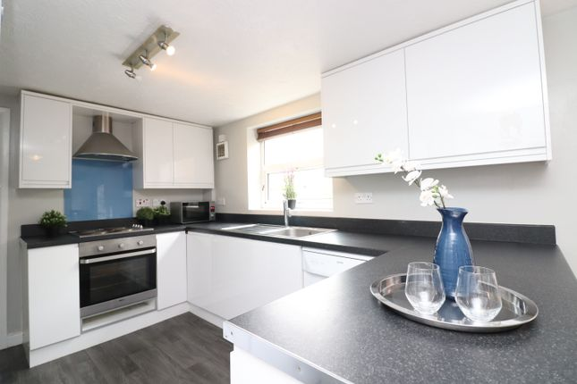 Thumbnail Detached house to rent in Padwell Road, Southampton