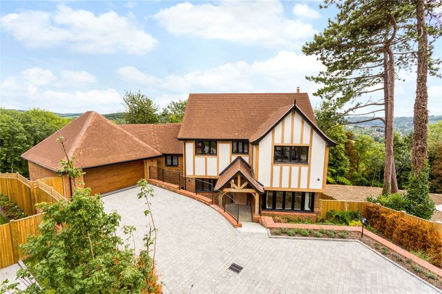 Thumbnail Detached house for sale in Plot 3, Butterfly Walk, Surrey