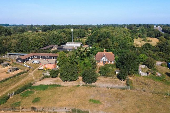 Thumbnail Detached house for sale in London Road, Lattinford Bridge, Capel St Mary