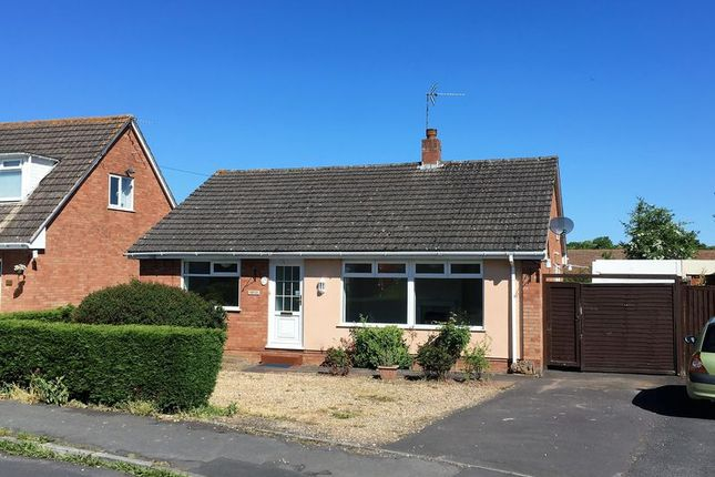 Thumbnail Detached bungalow for sale in West View, Creech St. Michael, Taunton