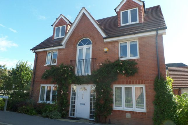 Thumbnail Detached house to rent in Baxendale Road, Chichester