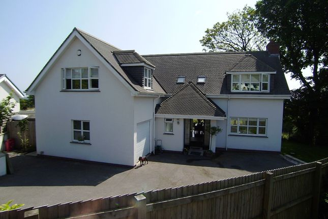 Thumbnail Detached house to rent in The Downs, Reynoldston, Gower, Swansea