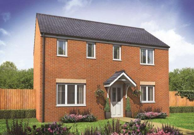 Thumbnail Detached house for sale in Plot 123 Clayton Corner Lth, Hampton Gardens, Hampton, Peterborough
