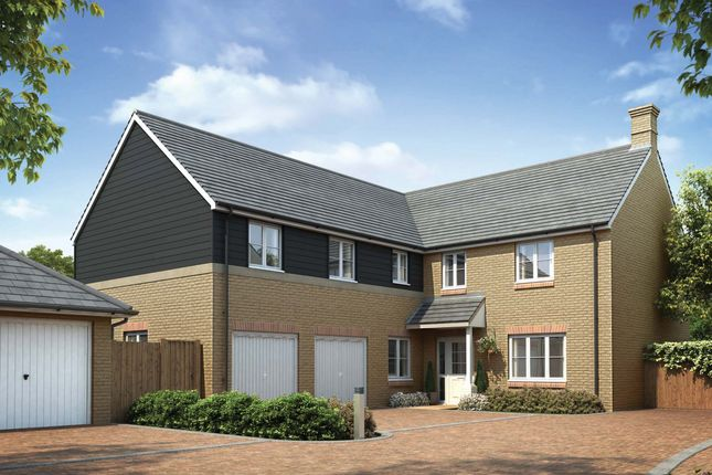 Thumbnail Detached house for sale in Radcliffe Road, Stamford