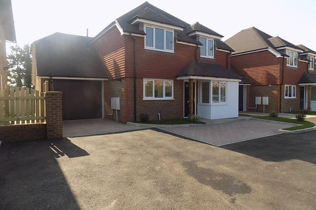 Thumbnail Detached house for sale in New Road, Hellingly, Hailsham