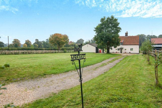 Thumbnail Cottage for sale in Fen Street, Bressingham, Diss