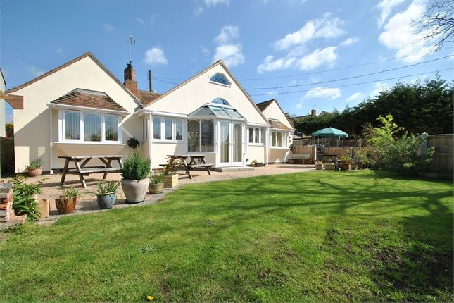 Thumbnail Detached bungalow for sale in Bocking Church Street, Braintree, Essex