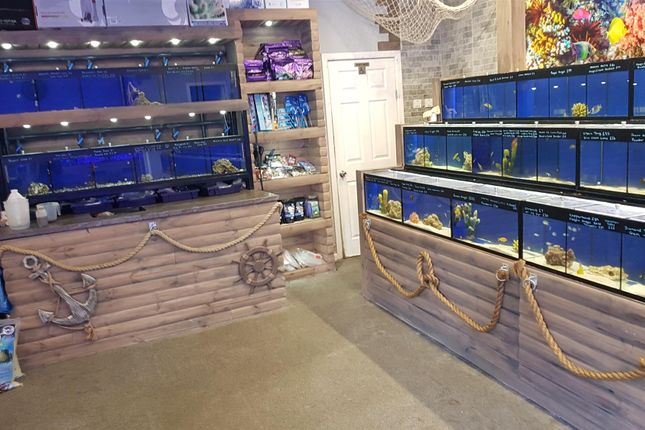 Thumbnail Retail premises for sale in Pets, Supplies & Services BD6, West Yorkshire