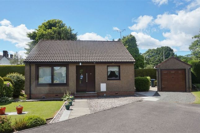 Thumbnail Detached bungalow for sale in 13 St Serfs Road, Crook Of Devon, Kinross-Shire
