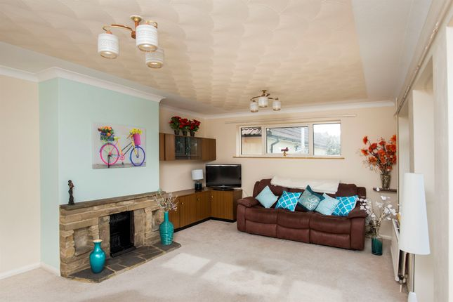 Thumbnail Detached house for sale in Middle Road, Hastings