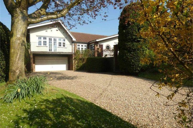Thumbnail Detached bungalow to rent in Watford Road, Crick, Northampton