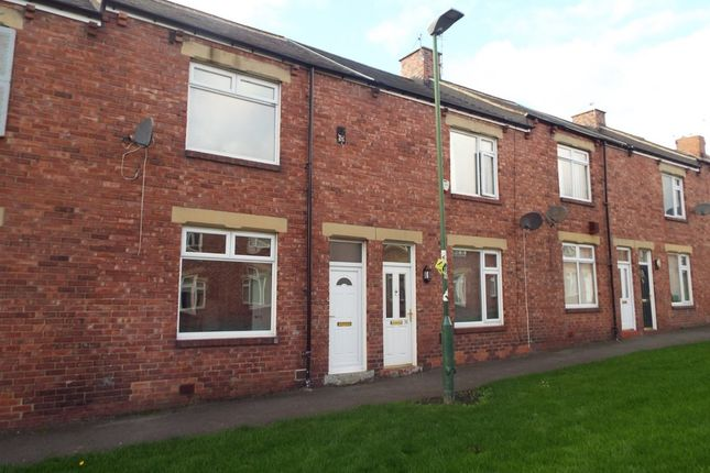 Thumbnail Terraced house to rent in The Avenue, Pelton, Chester Le Street