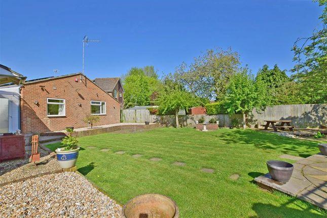Thumbnail Detached bungalow for sale in The Greenways, Paddock Wood, Tonbridge, Kent