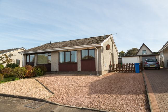 Thumbnail Semi-detached bungalow for sale in Braeview Place, Star