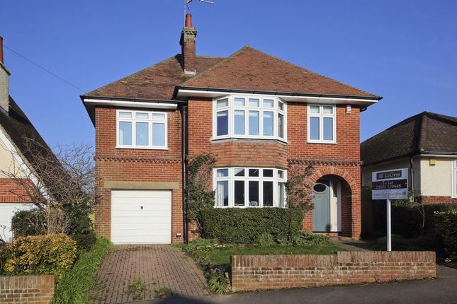 Thumbnail Detached house to rent in Doric Avenue, Southborough, Tunbridge Wells