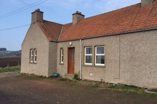 Thumbnail Cottage to rent in Ladybank, Cupar
