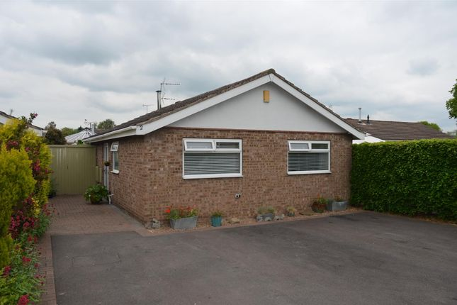 Thumbnail Detached bungalow for sale in Walnut Close, Aston-On-Trent, Derby