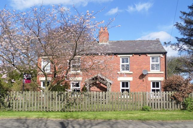 Thumbnail Property for sale in Longhirst, Morpeth