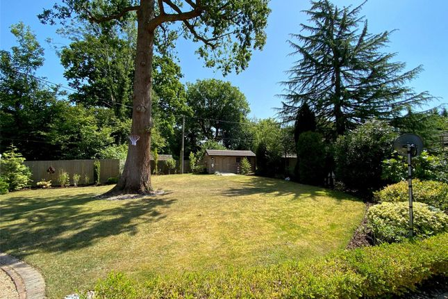 Front Garden of The Drive, Ifold, Loxwood, West Sussex RH14