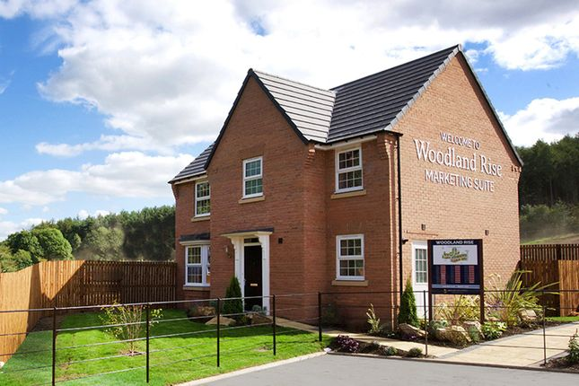 """Thumbnail Detached house for sale in """"Mitchell"""" at Craneshaugh Close, Hexham"""
