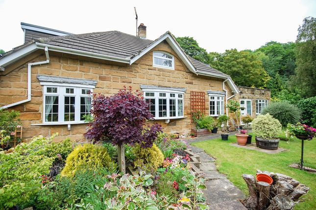 Thumbnail Detached house for sale in Marske Lane, Skelton