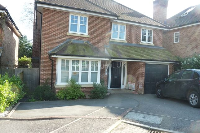Thumbnail Detached house for sale in Spruce Place, East Grinstead, West Sussex.