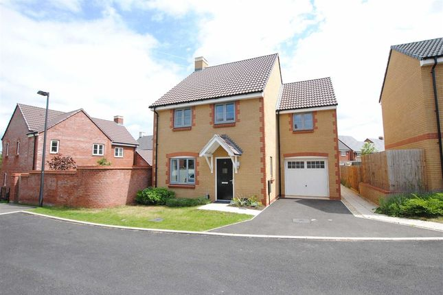 Thumbnail Detached house for sale in Sorrel Place, Stoke Gifford, Bristol