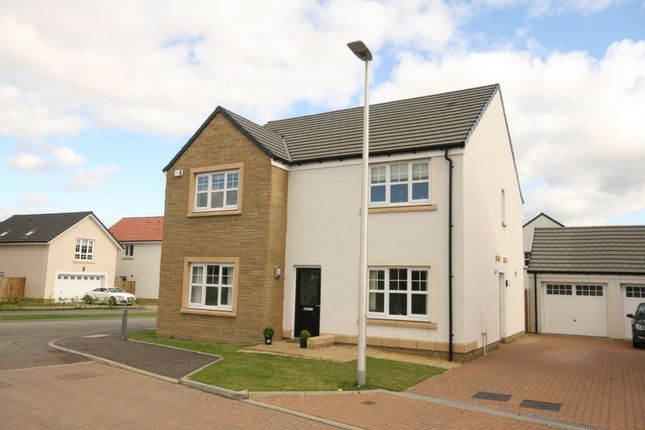 Thumbnail Detached house for sale in Rowling Crescent, Larbert
