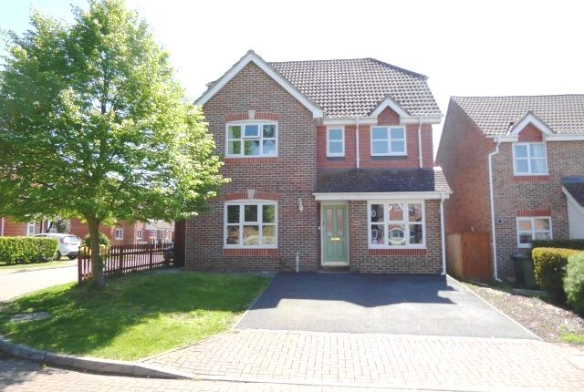 Thumbnail Detached house for sale in Trotter Way, Epsom