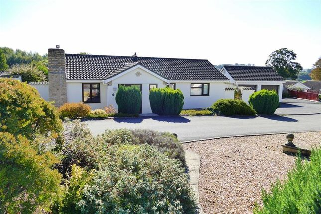 Thumbnail Detached bungalow for sale in Sarum Way, Curzon Park, Calne