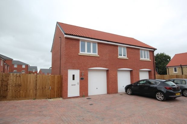 Thumbnail Detached house to rent in Campion Way, Bridgwater