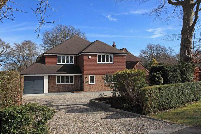 Thumbnail Detached house for sale in Dornden Drive Langton Green, Tunbridge Wells, Kent