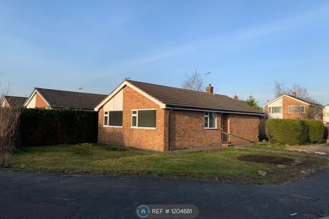 3 bed bungalow to rent in Delamere Road, Nantwich CW5