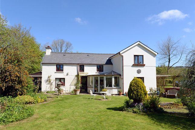 Thumbnail Farmhouse for sale in Honey Cottage, Marros, Pendine, Carmarthen