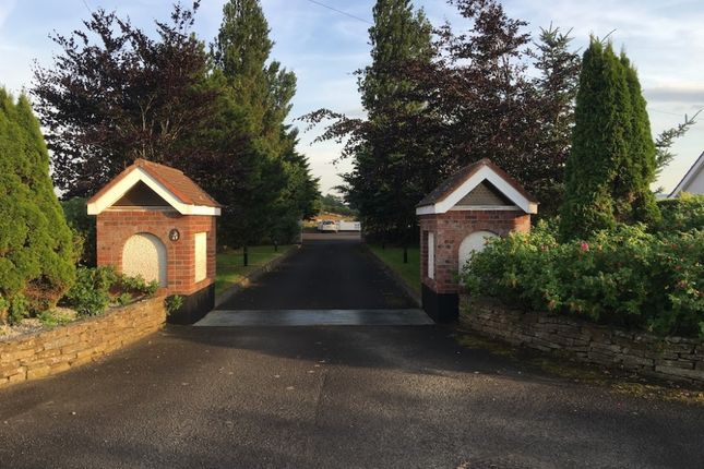 Thumbnail Detached bungalow for sale in Spallan Road, Limavady