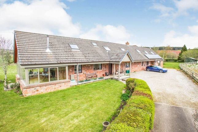 Thumbnail Detached house for sale in Cotton Of Balnamoon, Brechin