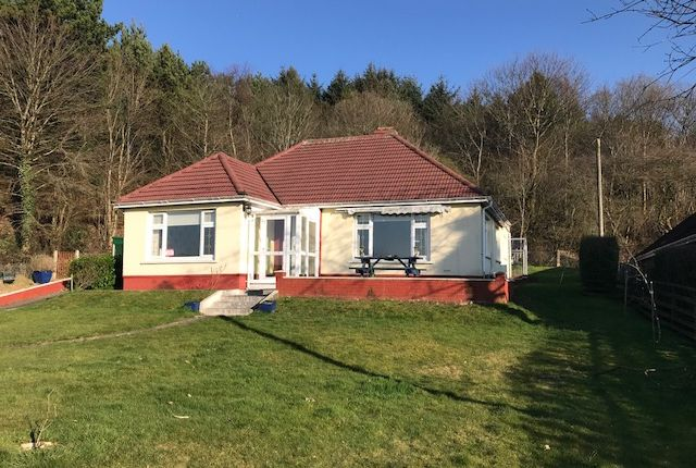 Thumbnail Detached bungalow for sale in New Church Road, Ebbw Vale