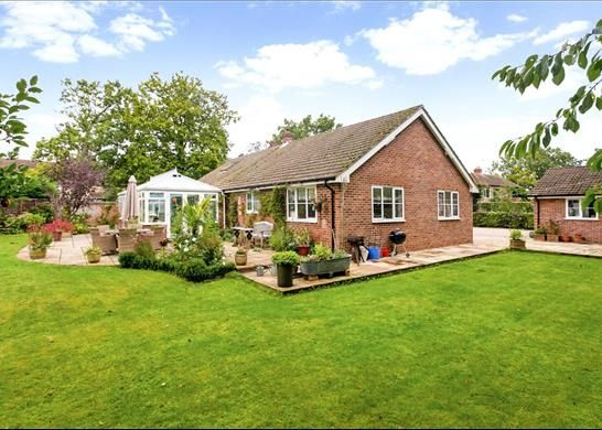 Thumbnail Bungalow for sale in Wolverton Common, Tadley Hampshire