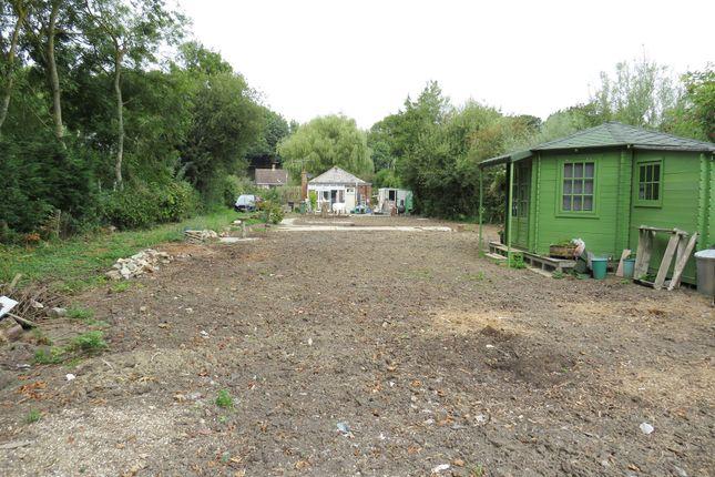 Thumbnail Detached bungalow for sale in Marsham Brook Lane, Pett Level, Hastings