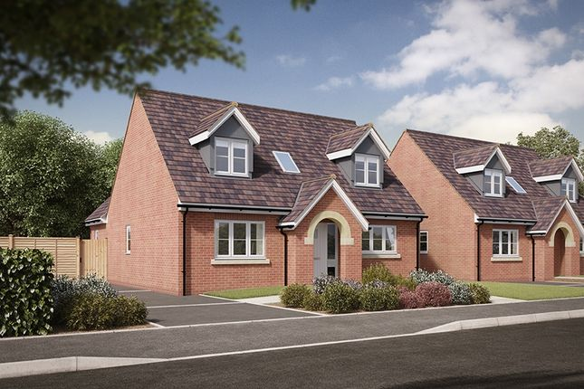 "Thumbnail Detached house for sale in ""The Tagwell"" at Salford Road, Bidford-On-Avon, Alcester"