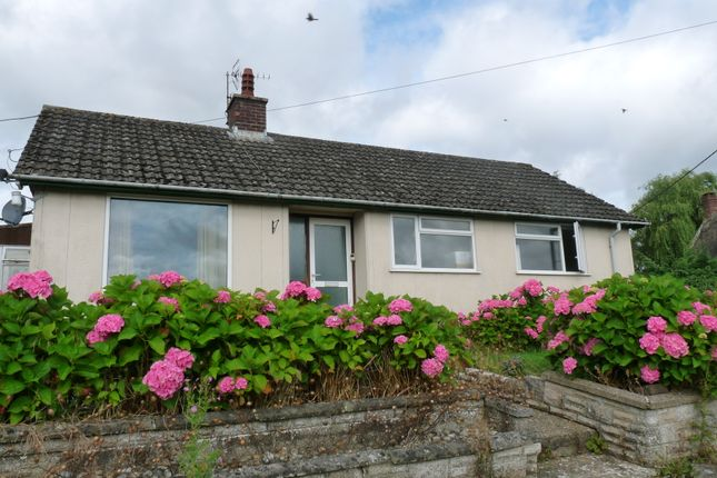 Thumbnail Detached bungalow to rent in Chapel Lane, Yetminster