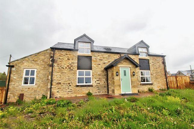 Thumbnail Detached house for sale in Templar Street, Blackhill, Consett