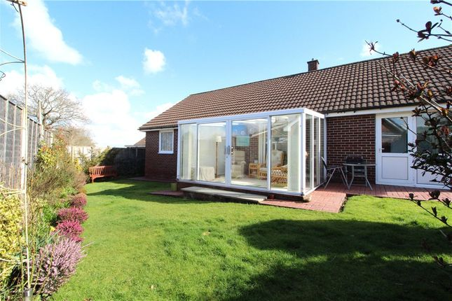 Devon Estate Agents Property For Sale