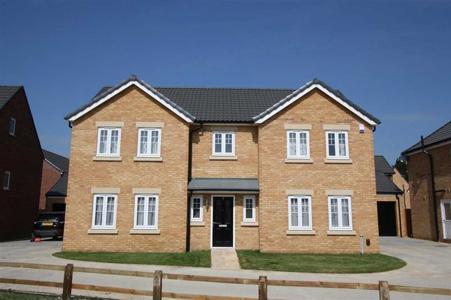 Thumbnail Detached house to rent in Mallard Way, Exning, Newmarket