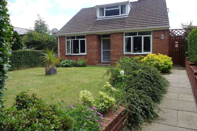 Thumbnail Bungalow to rent in Upper Cwmbran Road, Upper Cwmbran, Cwmbran
