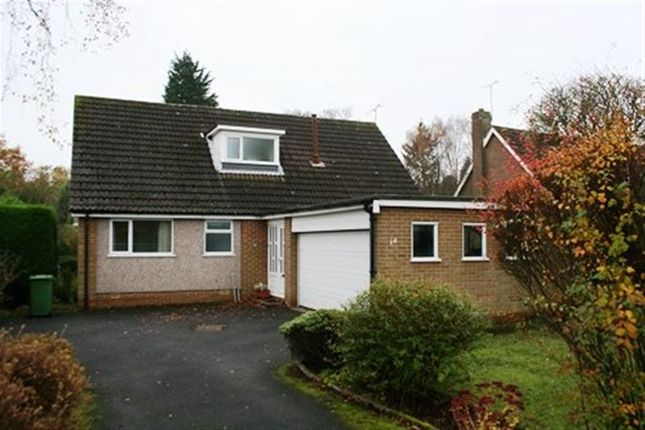 Thumbnail Property to rent in Brooklands, Ponteland, Northumberland