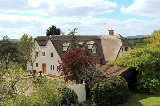 Thumbnail Detached house for sale in Green Lane, Ringmer, Lewes