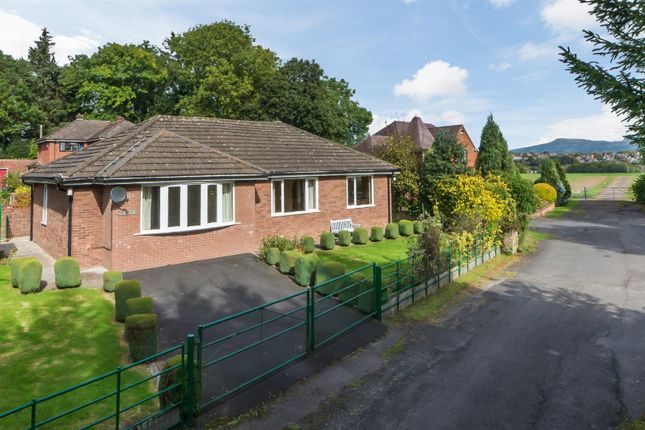 3 bed detached bungalow to rent in Lower Barns Road, Ludford, Ludlow
