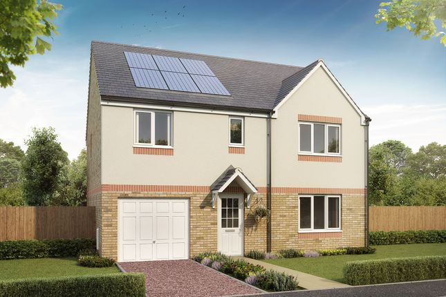 """Thumbnail Detached house for sale in """"The Warriston"""" at Waukglen Avenue, Glasgow"""