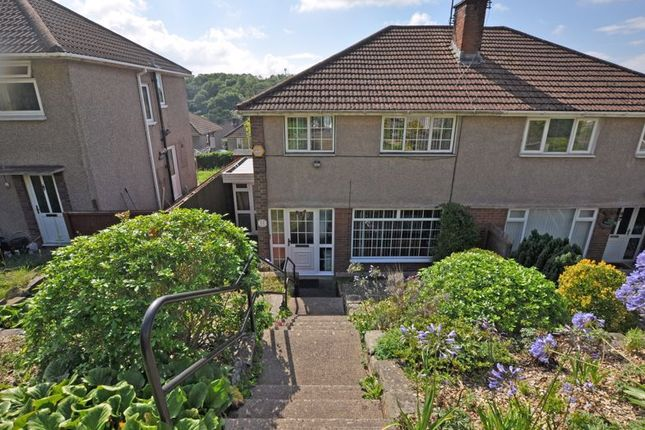 Thumbnail Semi-detached house to rent in Semi-Detached House, Glanwern Rise, Newport